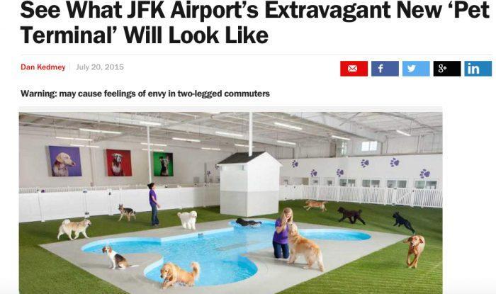 Time JFK Pet Terminal