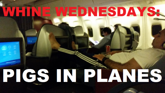 Whine Wednesdays Pigs In Planes