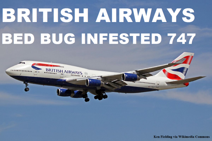 British Airways Bed Bugs Infested 747
