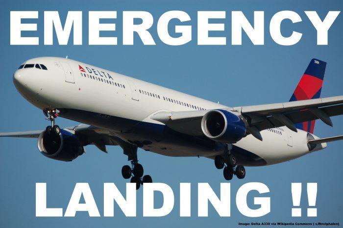 Delta_A330 copy 2